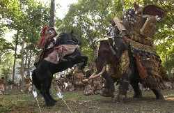 Spektakulär: Der Kampf Pferd gegen Elefant