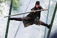 Mei (Zhang Ziyi) erwehrt sich im saftig grünen Bambuswald ihrer Feinde...