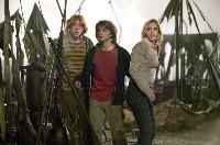 Ganz schön gefährlich: Ron, Harry und Hermine (Rupert Grint, Daniel Radcliffe, Emma Watson v.l.) meistern wieder manches Abenteuer