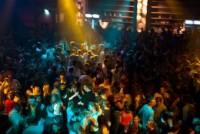Das Partyvolk