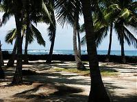 Die Insel entpuppt sich als eine sehr gefährliche Idylle