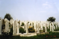 Auf den Bergen um die Stadt finden sich große Felder mit weißen Steinkreuzen. Die meisten stammen aus der Zeit zwischen 1994 und 1998.