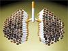 """""""Rauchen tötet jährlich 3.300 Passivraucher"""""""